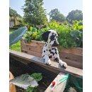 HK-PÄDs 1 kg Blumendünger Tomatendünger Rosendünger